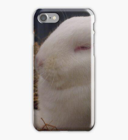 Snoozing iPhone Case/Skin