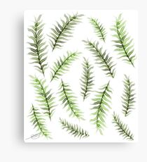 palm leaves plant watercolor illustration Canvas Print