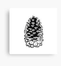 Giant pinecone Canvas Print