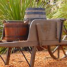 Wheel Barrow by Terry Best
