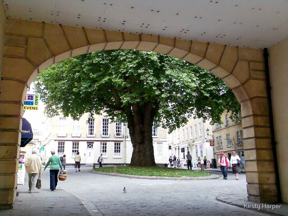 Tree by Kirsty Harper