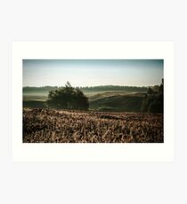 Vintage Autumn Morning Landscape Art Print