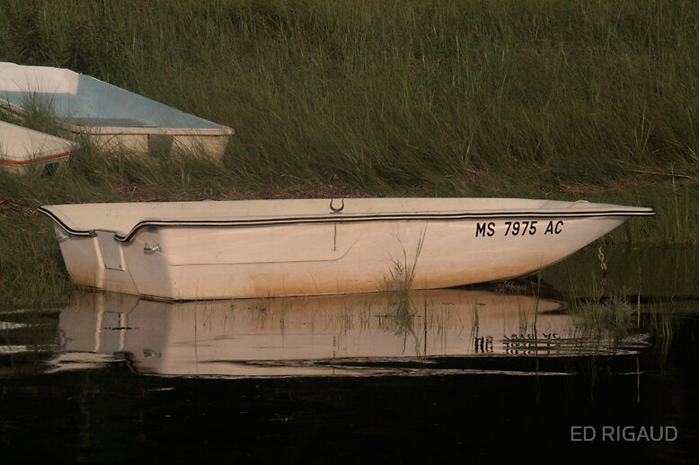 Boat by ED RIGAUD