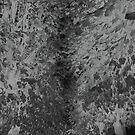 « L'allée » par mllethorgard