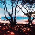 Florence Bay Shadows by Cary McAulay