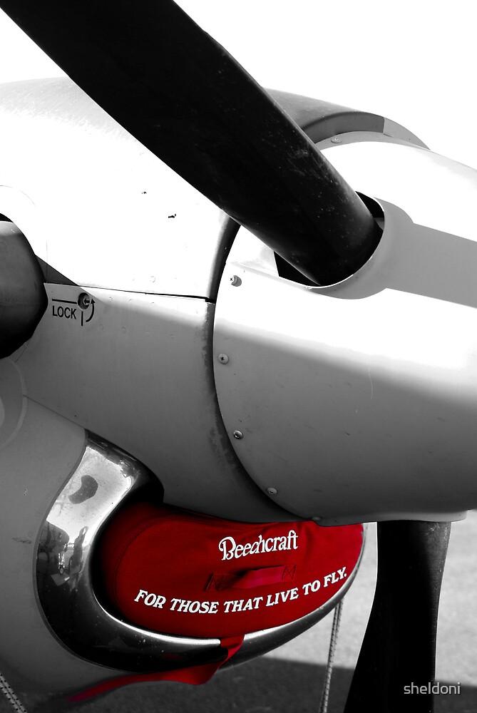 """Beechcraft"" by sheldoni"