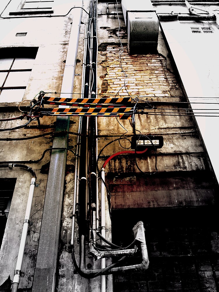 pipes and lines by lauren lederman