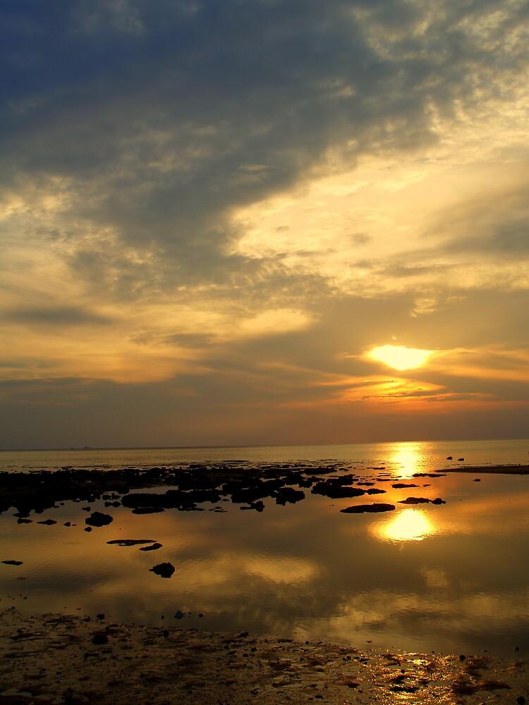 sunset ver.2.0 by lauren lederman