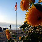 flagflower by Carl Osbourn