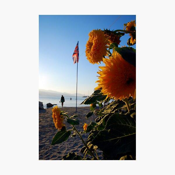 flagflower Photographic Print
