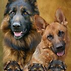 German Shepherd Family Collage by Sandy Keeton