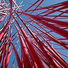 Matchsticks by Tim Condon