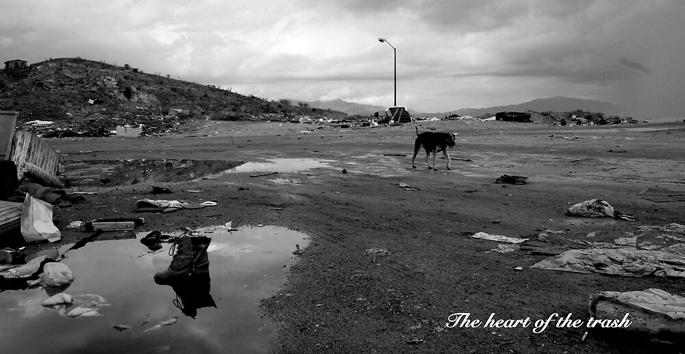 The heart of the trash by Caligari