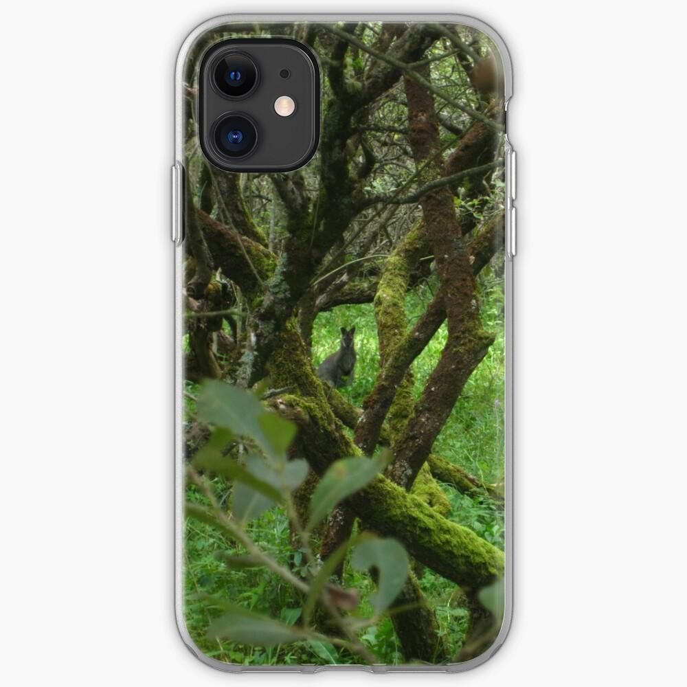 Ballaugh Curraghs iPhone Case & Cover