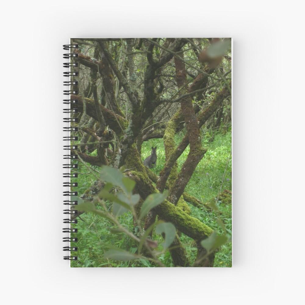 Ballaugh Curraghs Spiral Notebook