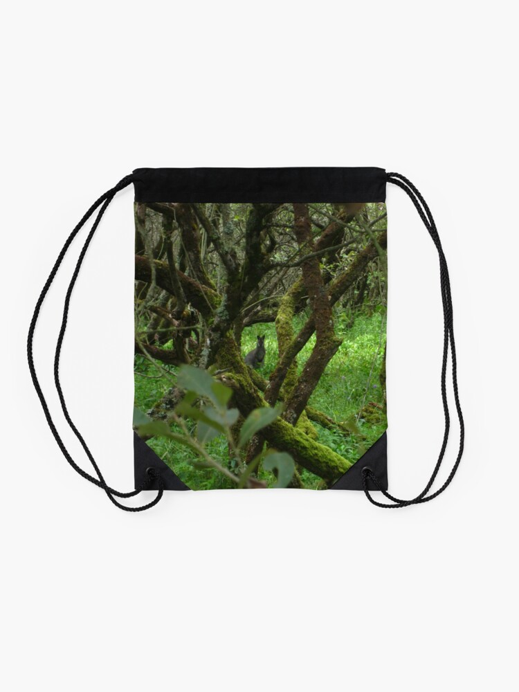 Alternate view of Ballaugh Curraghs Drawstring Bag