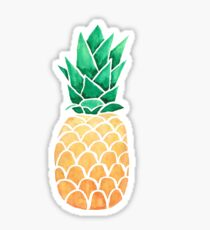 Watercolour Pinapple Sticker