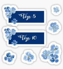 Pegatina Top 5 y Top 10