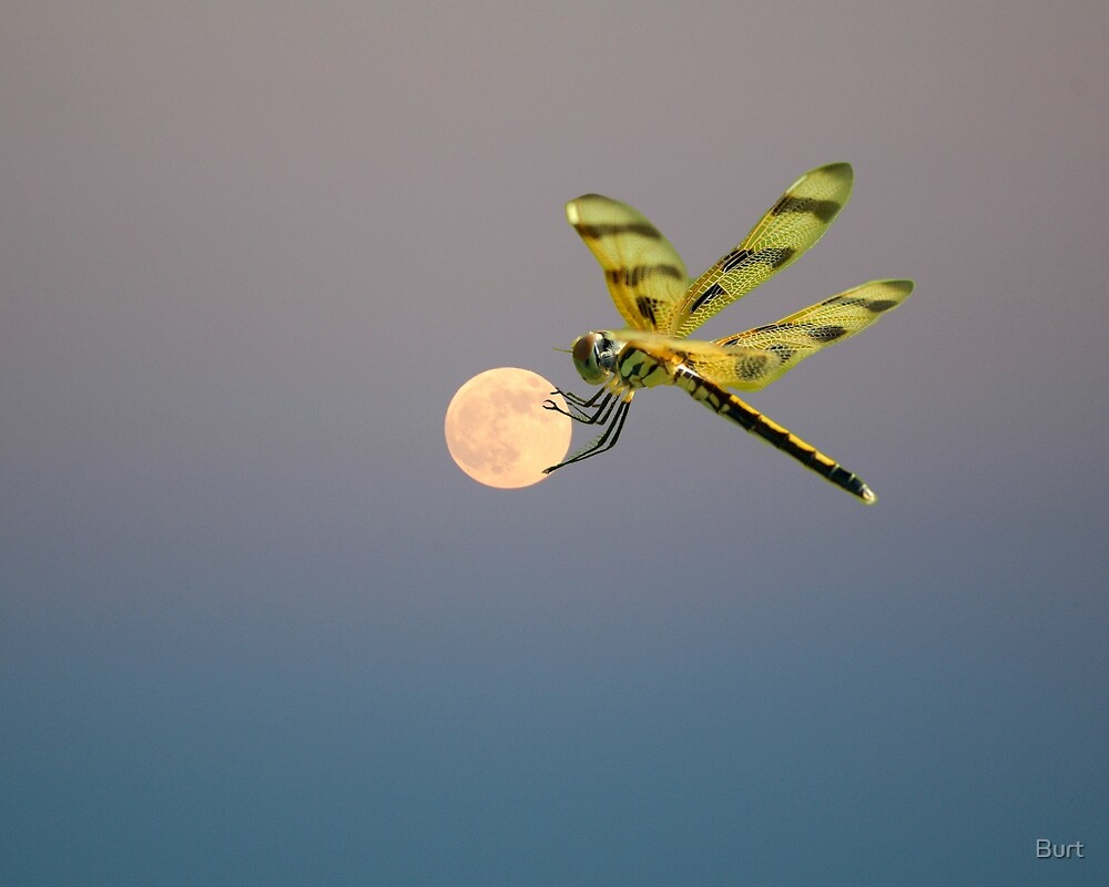 Hanging On To The Moon by Burt