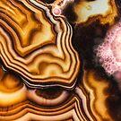Rosafarbenes Brown Turritella Achat-Muster von MMPhotographyUK