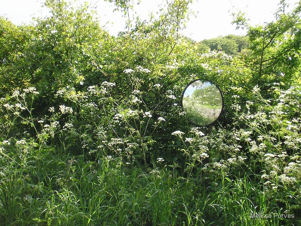 Mirror Mirror by Melissa Purves