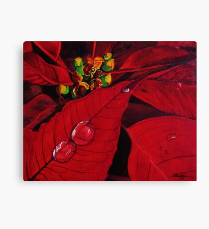 Big Red Poinsettia Canvas Print