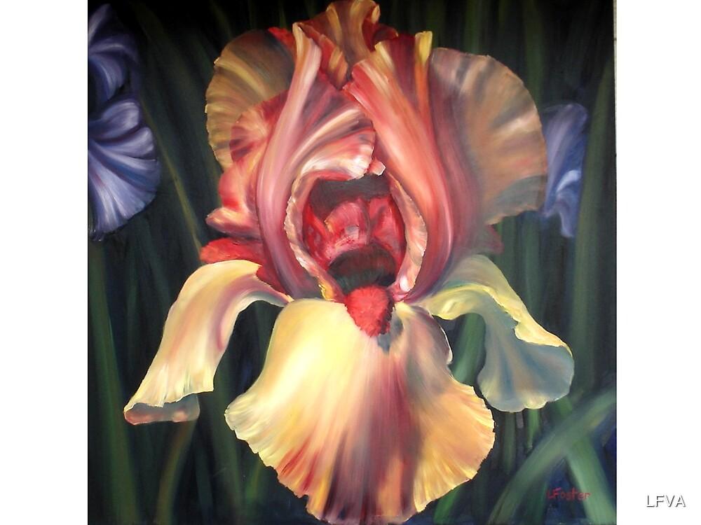 Iris Almighty by LFVA