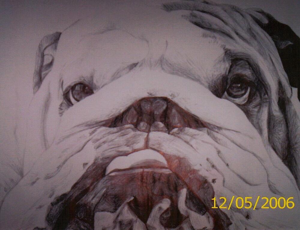 bulldog by diamondscorpio12