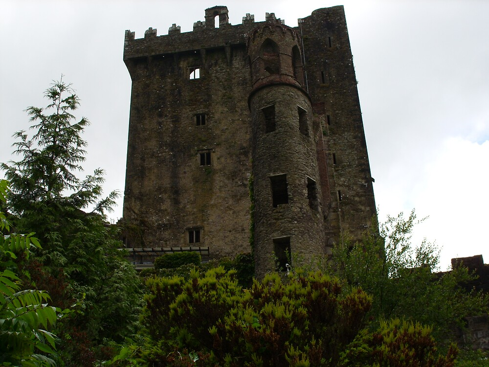 Blarney Castle by Reeshia1230