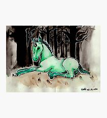 Dark Unicorn Foal Photographic Print