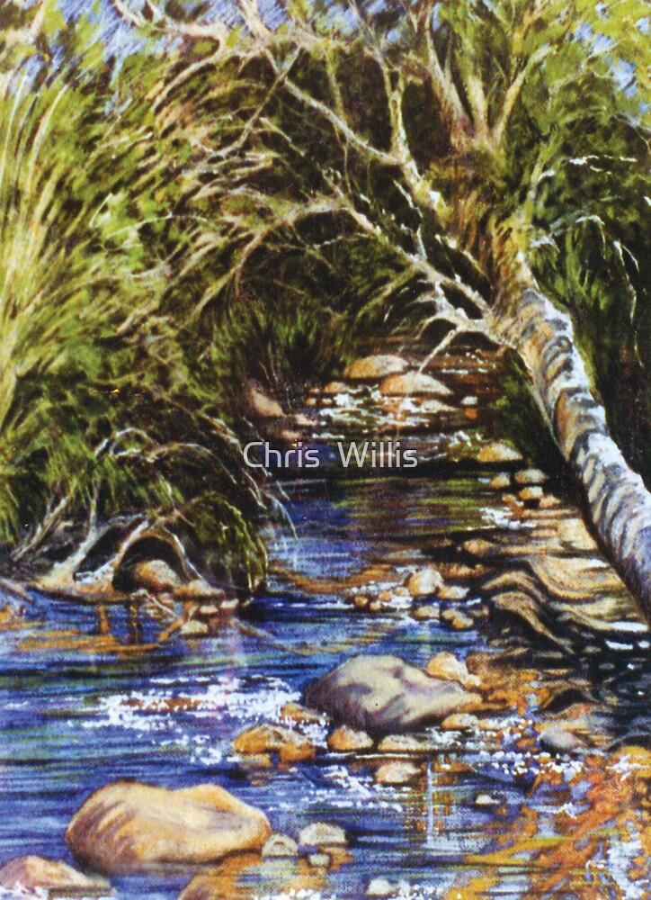 Rocky Pool.  Western Australia by Chris  Willis