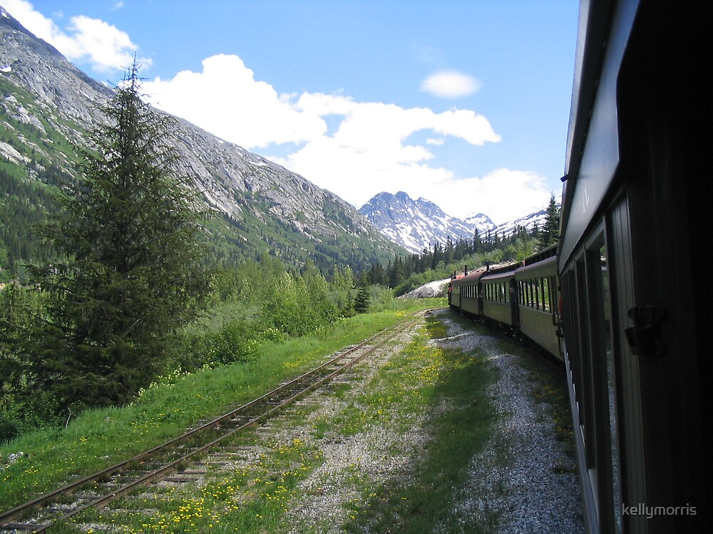 Skagway Train Ride by kellymorris