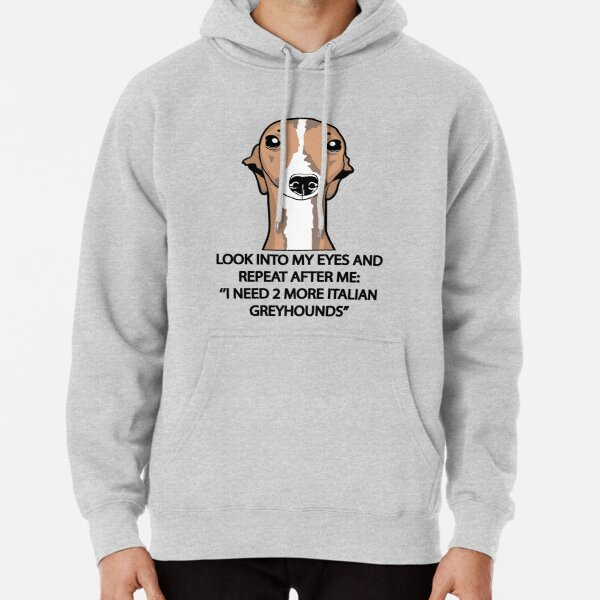 I Need 2 More Italian Greyhounds Pullover Hoodie