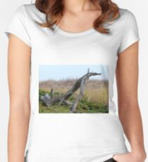 Coastal Driftwood Women's Fitted Scoop T-Shirt