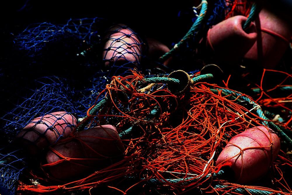 Fishing net by Andrew Edgar