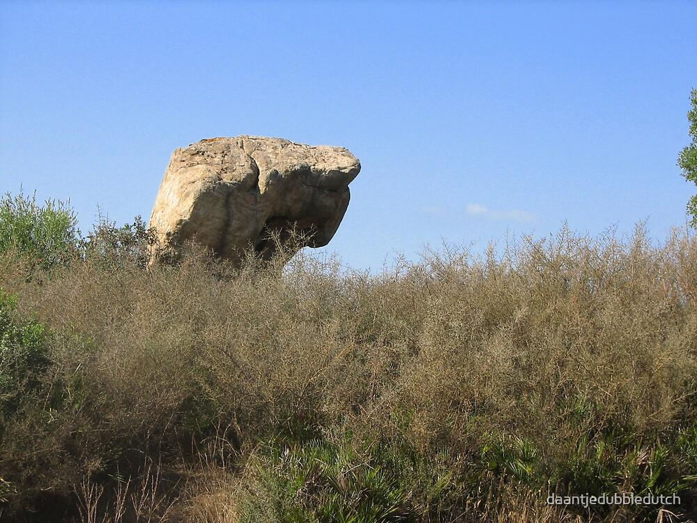 rock by daantjedubbledutch
