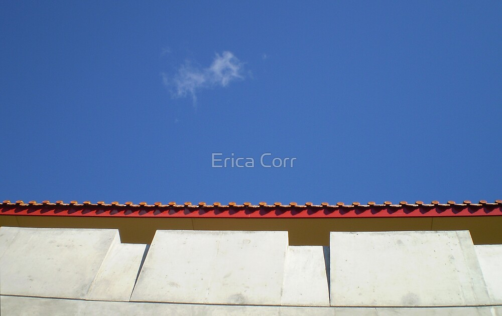 The Roof and the Cloud by Erica Corr