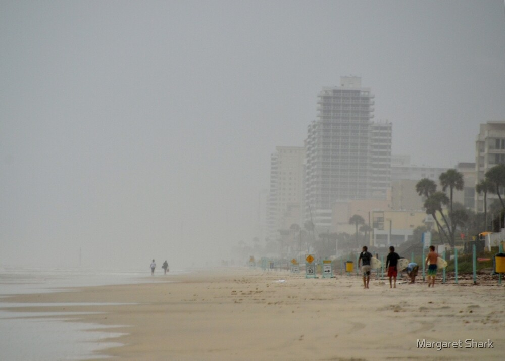 Tropical Storm Beryl at Ormand Beach Fl by Margaret  Shark