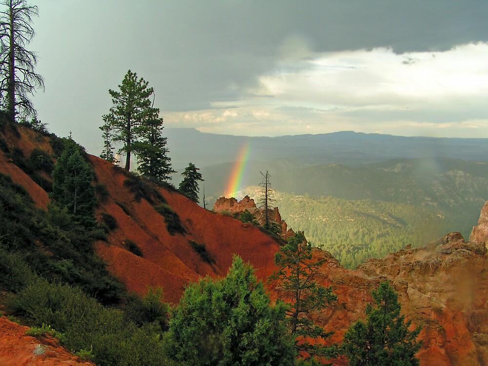 Rainbow Ray by kraftyest