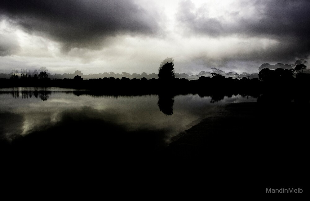 Dark Wetlands by MandinMelb