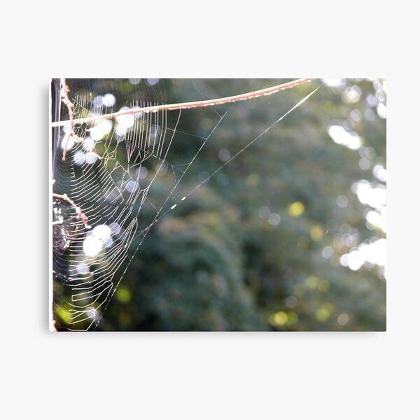webbage Metal Print
