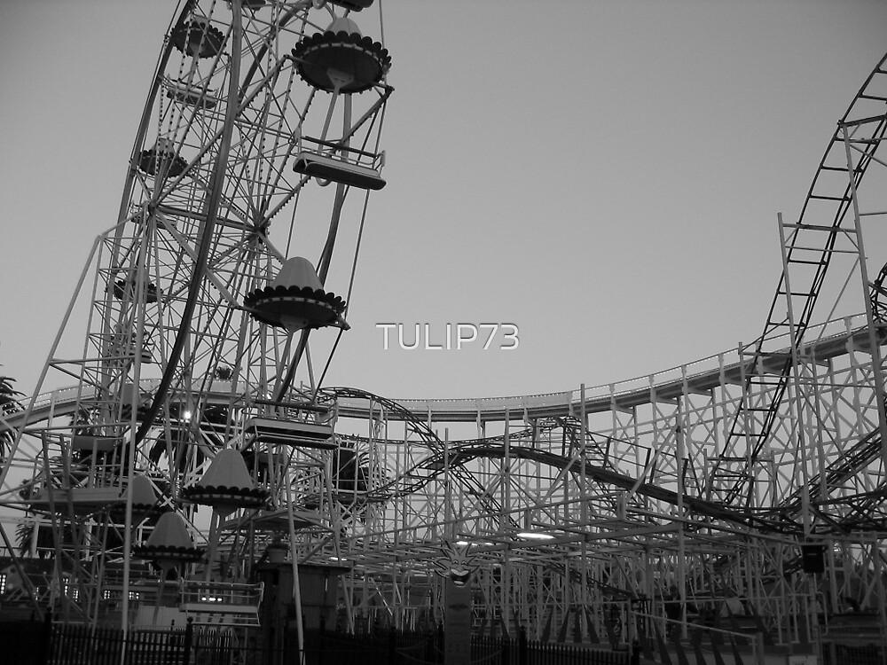 LUNA PARK by TULIP73