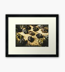 Ancient battlefield armour Framed Print