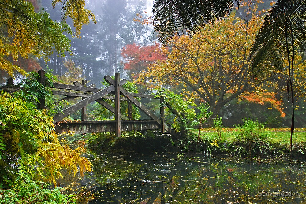 Colours of Autumn by Sam Sneddon