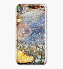 Shelf fungus iPhone Case/Skin