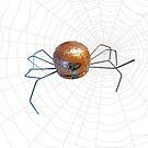 The spider's web by Neil Elliott