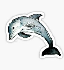 Pegatina delfín
