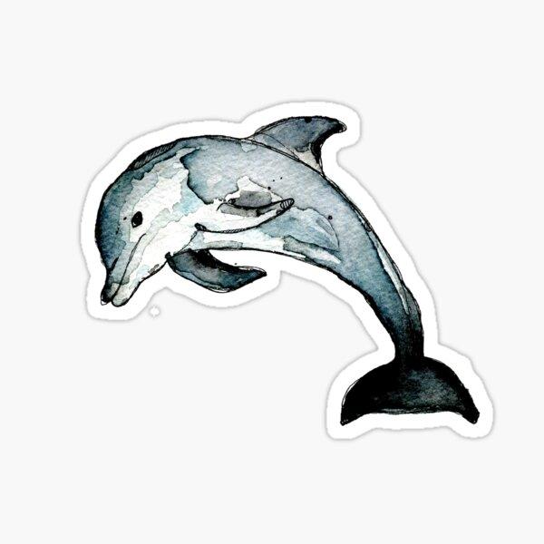 Dolphin Sticker