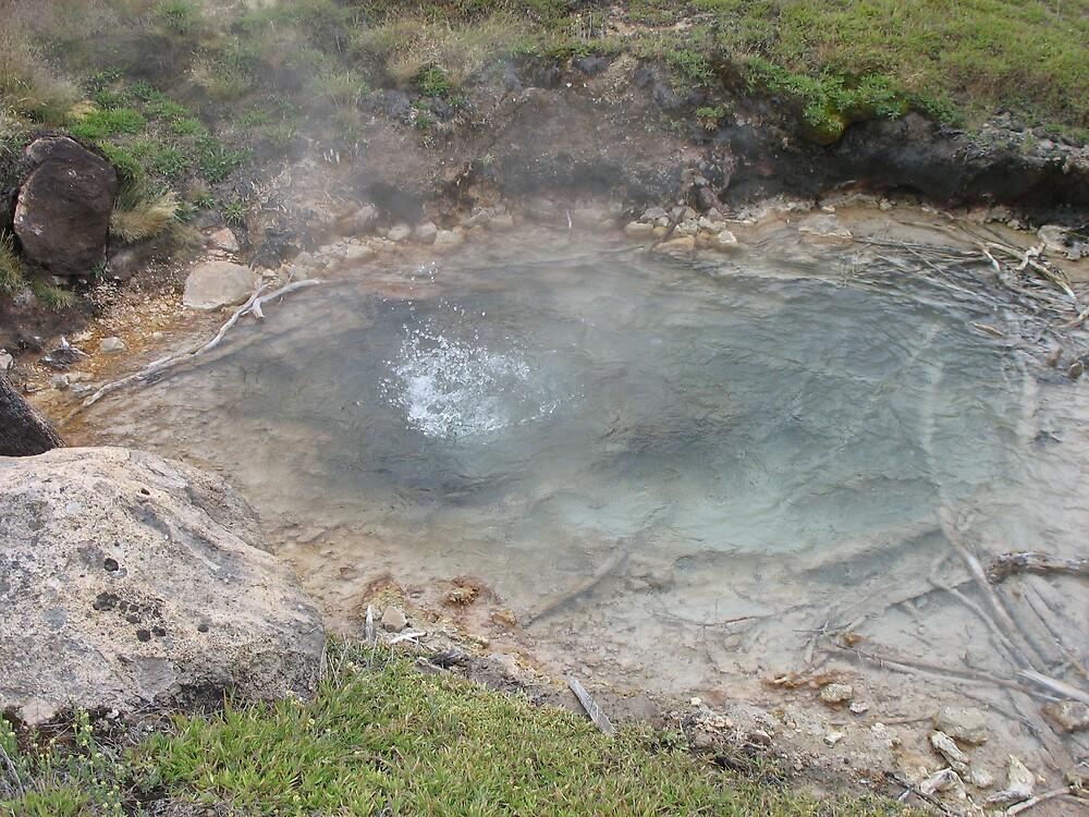 boiling pool by Brynne Kaufmann