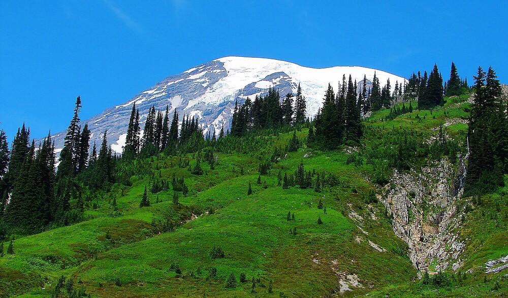 Mount Rainier 534 by jduffy111